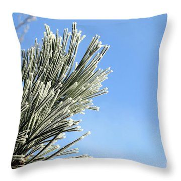 Icing On The Needles Throw Pillow