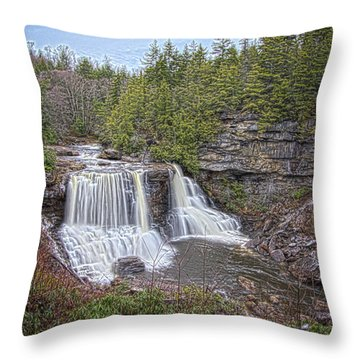 Iconic Falls Throw Pillow