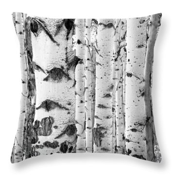 Iconic Throw Pillow by The Forests Edge Photography - Diane Sandoval