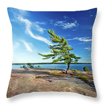Iconic Windswept Pine Throw Pillow