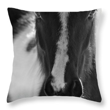 iContact Throw Pillow