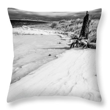 Icy Beach Throw Pillow