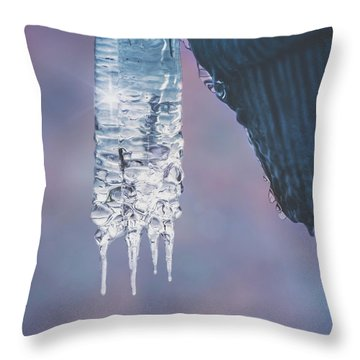 Throw Pillow featuring the photograph Icy Beauty by Ari Salmela