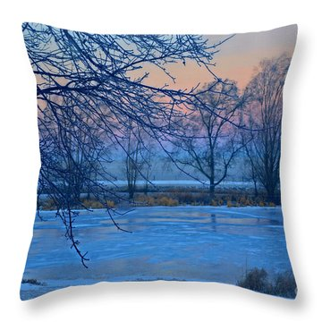 Icy Beauty Throw Pillow