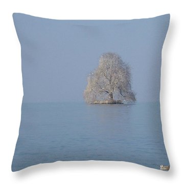 Icy Isolation Throw Pillow