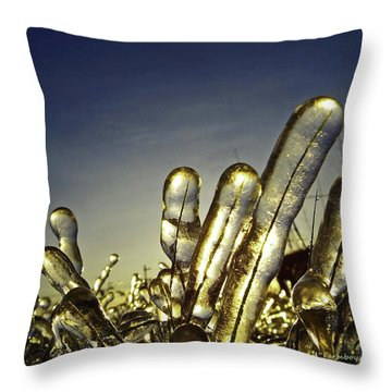 Icy Lawn Throw Pillow