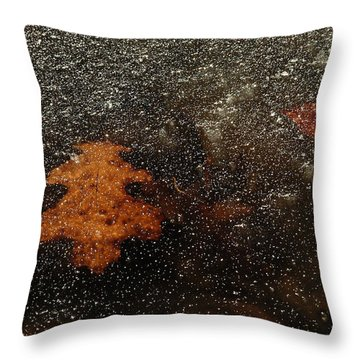 Icy Leaf Throw Pillow by Michael McGowan