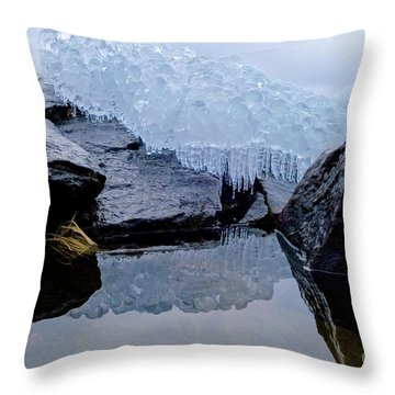 Icy Reflections Throw Pillow by Sandra Updyke