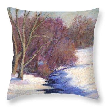 Icy Stream Throw Pillow by Vikki Bouffard