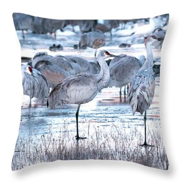 Icy Stroll Throw Pillow