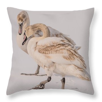 Icy Tango Throw Pillow