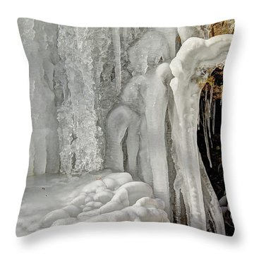 Throw Pillow featuring the photograph Icy Tendrils by Wanda Krack