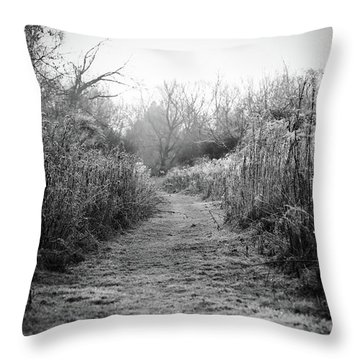 Icy Trail In Black And White Throw Pillow