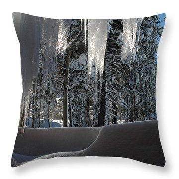 Icy Viewpoint Throw Pillow by Donna Blackhall