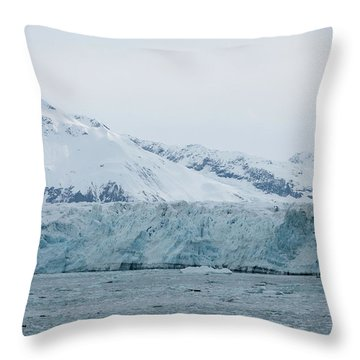 Icy Wonderland Throw Pillow