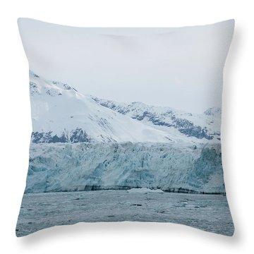 Icy Wonderland Throw Pillow