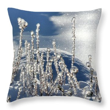 Throw Pillow featuring the photograph Icy World by Doris Potter