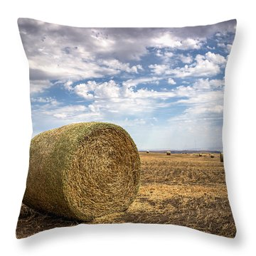 Idaho Hay Bale Throw Pillow by Brad Stinson