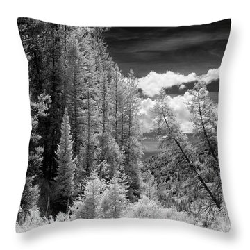Idaho Passage Throw Pillow
