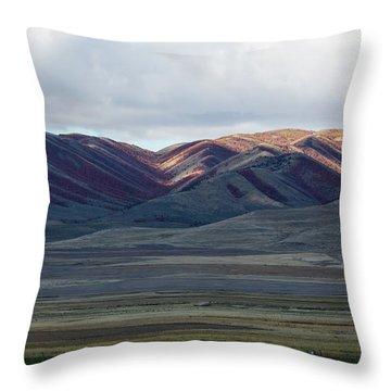 Idaho Red Throw Pillow
