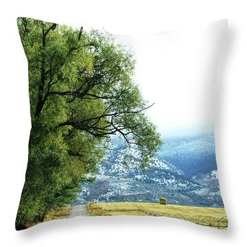 Idaho Road Trip Throw Pillow by Cynthia Powell