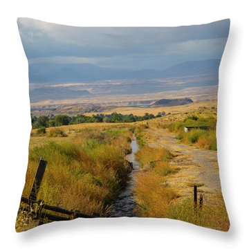 Idaho Stream Throw Pillow