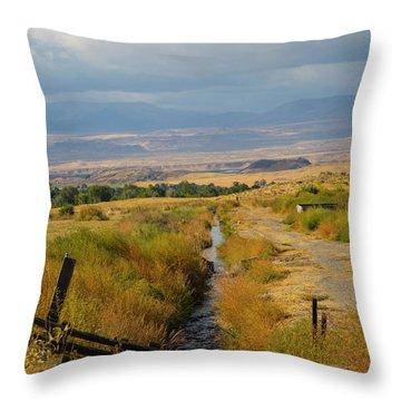 Idaho Stream Throw Pillow