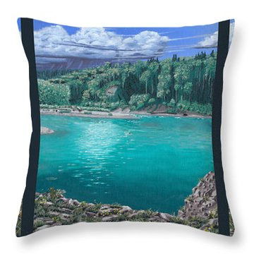 Idiot Rock Throw Pillow