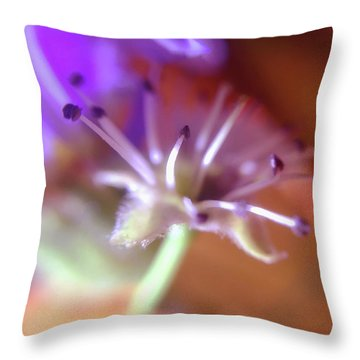 Idora Park Original Concept Art Throw Pillow