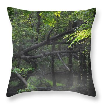 Throw Pillow featuring the photograph If A Tree Falls In The Woods by Skip Willits
