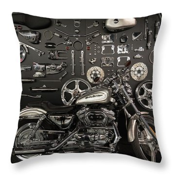 If Bling Is Your Thing Throw Pillow by Randy Scherkenbach