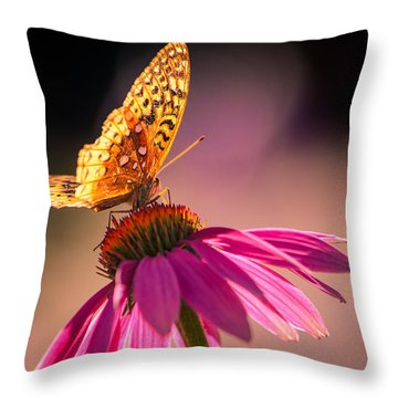If I Could Throw Pillow by Craig Szymanski