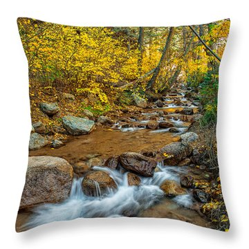 If I Could Stop Time Throw Pillow