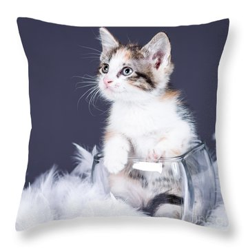 If It Fits Throw Pillow