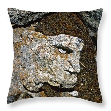 If Looks Could Grill Throw Pillow