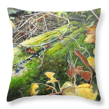 If There Were Fairies Throw Pillow