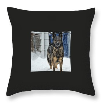 If You Dare Throw Pillow by Nikki McInnes
