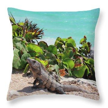 Iguana At Tulum Throw Pillow by Roupen  Baker