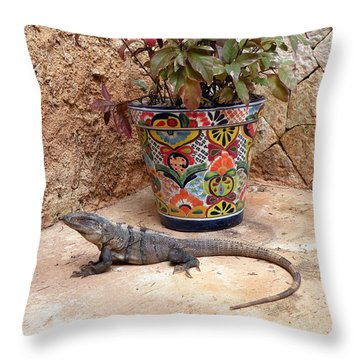 Throw Pillow featuring the photograph Iguana by Dianne Levy