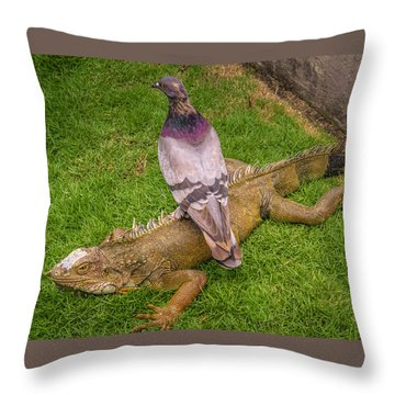 Iguana With Pigeon On Its Back Throw Pillow
