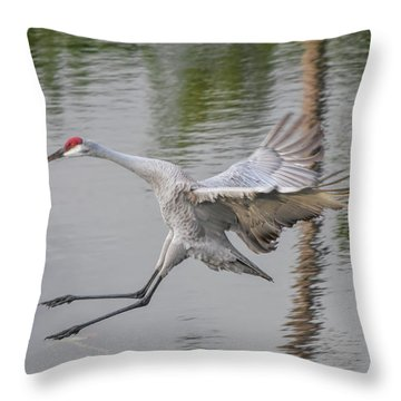 Ike The Crane's Grouchy Day Throw Pillow