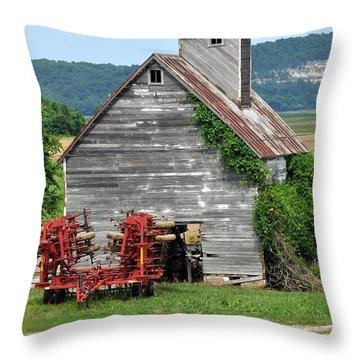 Ilini Barn Throw Pillow by Marty Koch