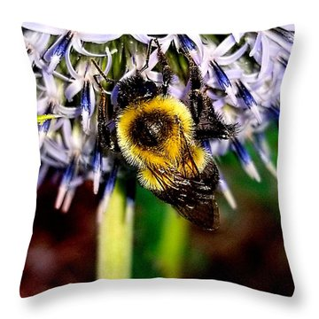 I'll Bee Back Throw Pillow