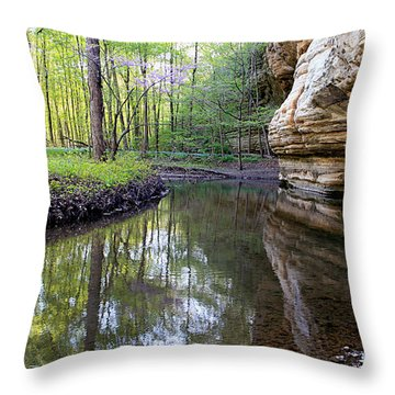 Throw Pillow featuring the photograph Illinois Canyon In Spring by Paula Guttilla