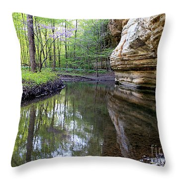 Illinois Canyon In Spring Starved Rock State Park Throw Pillow