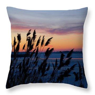 Illinois River Winter Sunset  Throw Pillow