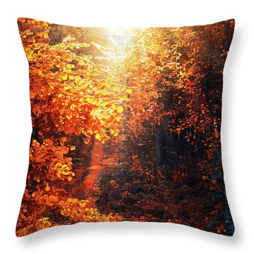 Illuminated Forest Throw Pillow