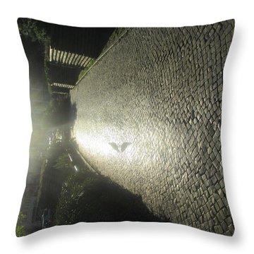 Illuminated Inverted Path Throw Pillow