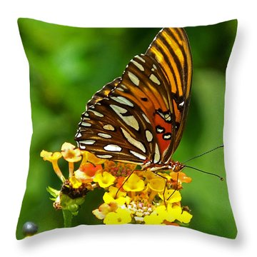 Illuminated Throw Pillow by Judy Wanamaker