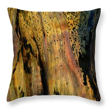 Illuminated Stump Throw Pillow by Bruce Gourley